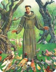 saint-francis-305x394