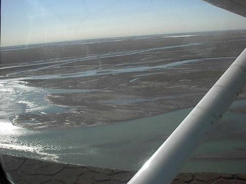 Image_of_anwr_in_summer_from_plane